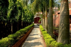 PDI resort rishikesh 9